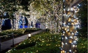 400-best-quality-led-solar-fairy-lights